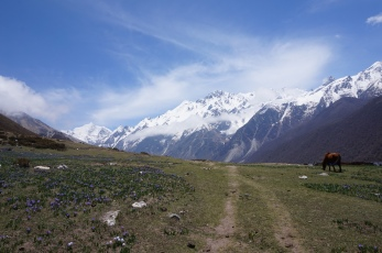 The idyllic view from Kyanjin Gompa.